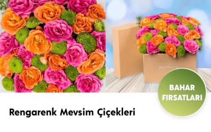 Rengarenk Mevsim Çiçeklerinde Fırsatlar ÇiçekSepeti'nde!
