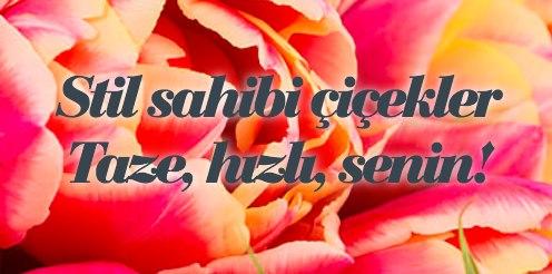 Stil Sahibi Çiçekler Taze, Hızlı, Senin!
